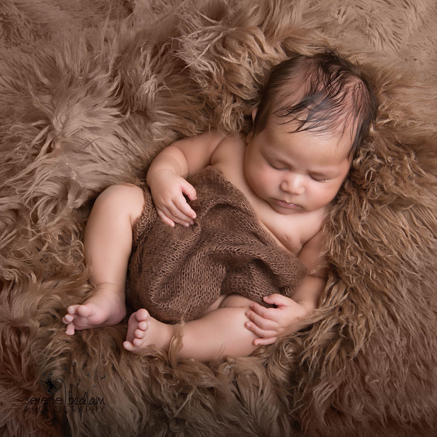 Serene Bedlam Newman Newborn Photography (5 of 10)
