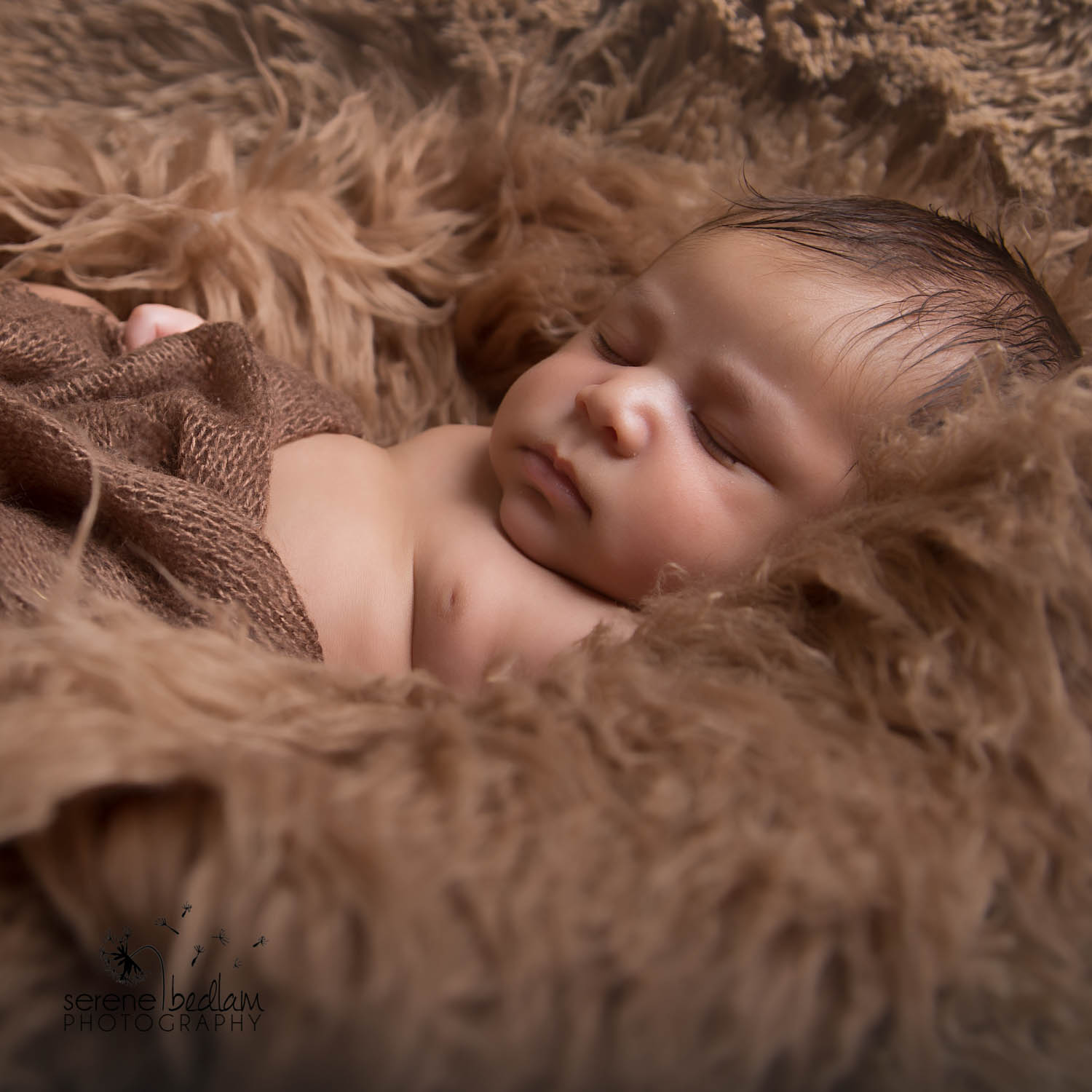 Serene Bedlam Newman Newborn Photography (7 of 10)