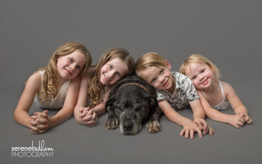 Newman Studio Pet Photography