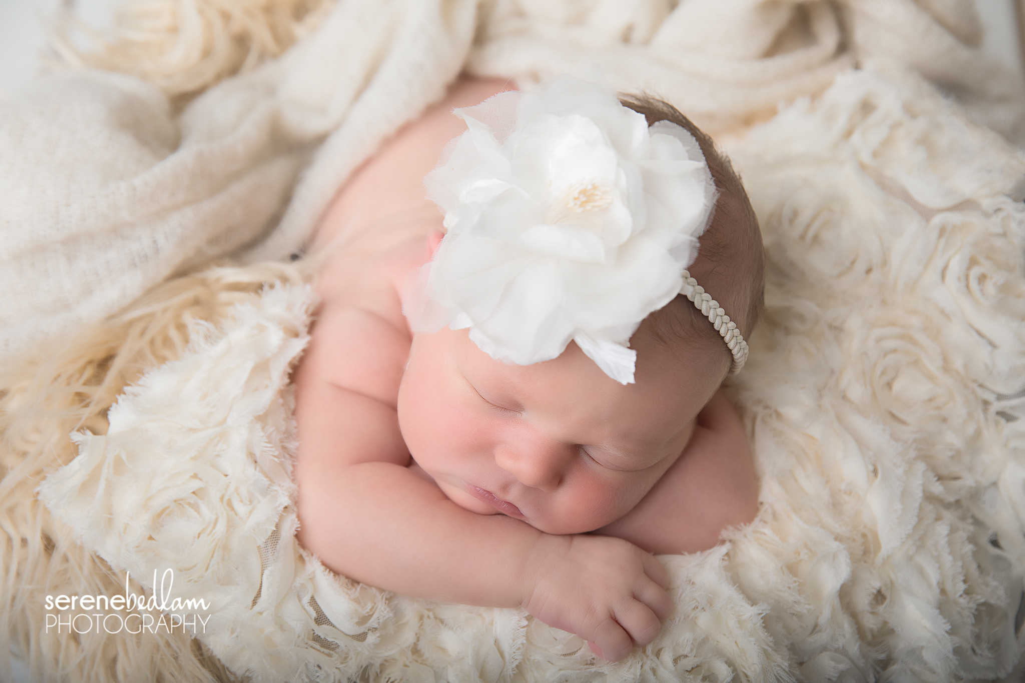 Serene Bedlam Newman Newborn Baby Photography - Milla
