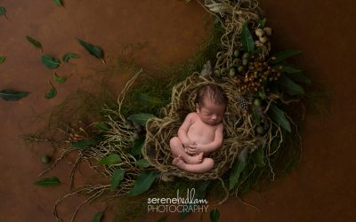2019 Newborn Photography Promotion